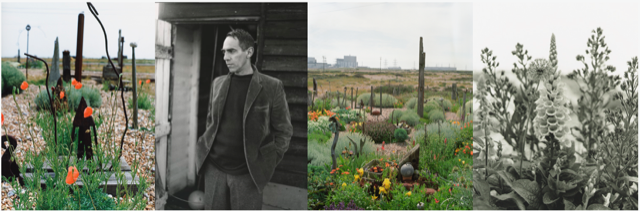 Derek Jarman at Prospect Cottage. Photography: Howard Sooley